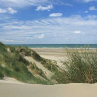 Sand dunes at Ynyslas nature reserve & beach