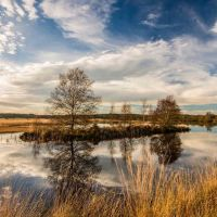 Cors Caron - local nature reserve - birdwatching