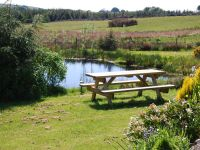 Wildlife pond & picnic table for visitors